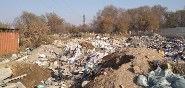 Кладбище в Военно-Антоновке превращается в мусорную свалку (фото)
