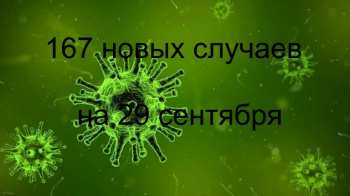 Статистика по коронавирусу. 167 новых случаев