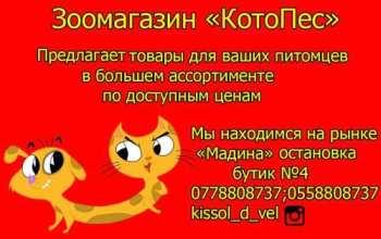 post-39724-0-53546300-1519745318_thumb.jpg