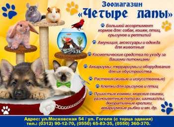 post-39724-0-82846100-1519744318.jpg