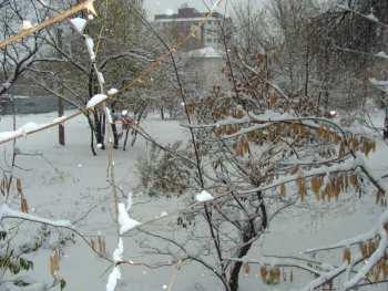 Без осадков — прогноз погоды по Кыргызстану на 14 ноября