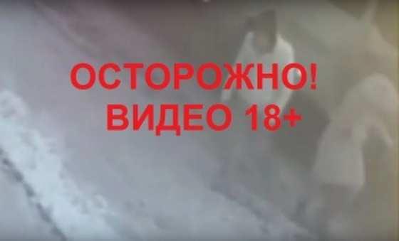 2019-12-26_13-16-29_628508.jpg
