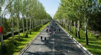 Мэрия Бишкека отменила велопробег из-за ухудшения ситуации с COVID