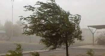 Будьте осторожны! На Бишкек и Чуйскую долину снова надвигается сильный ветер